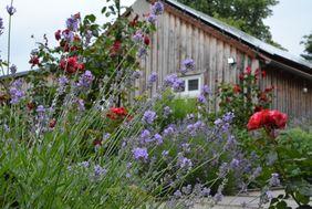 Offene Gärten Uckermark